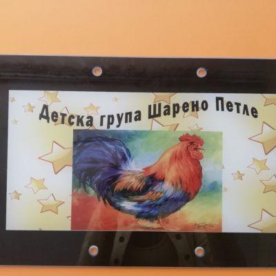 Шарено петле - ДГ Радомирче - Радомир